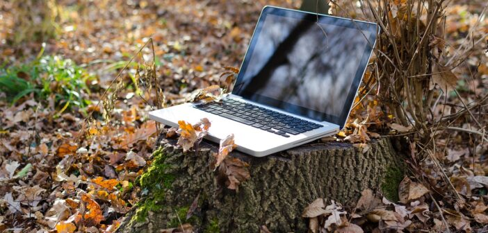 Со-основатель StormWall: «Подключение к любой публичной сети Wi-Fi опасно»
