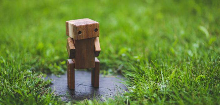 Сергей Шегай, Робовизард: «Робот работает круглосуточно, не болеет, не устает и не требует повышения зарплаты…»