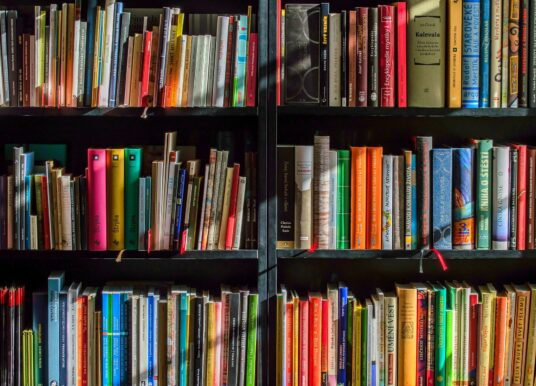 Что прочитать дизайнеру: экспертный список литературы